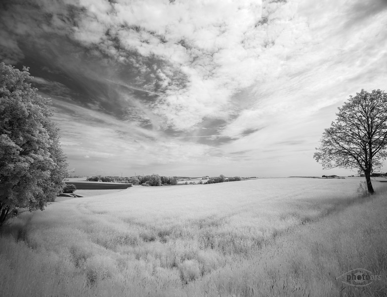 Felder hinter Mering, Schwaben, Bayern, Deutschland