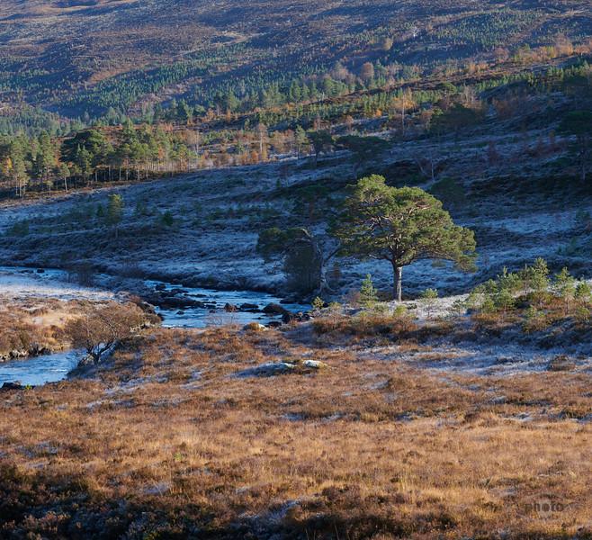 Am Fluss A' Ghairbhe, Highlands, Schottland
