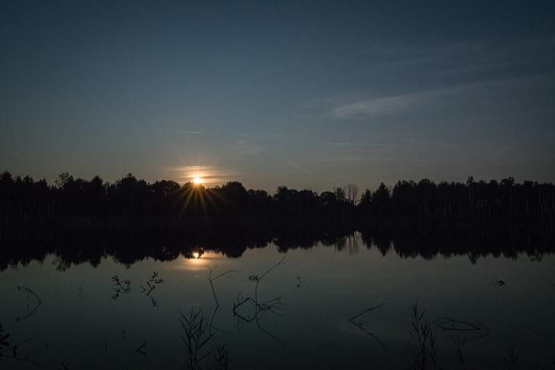 Mondaufgang bei einem Weiher im Torfabbaugebiet, Weilheim-Schongau, Oberbayern, Bayern, Deutschland