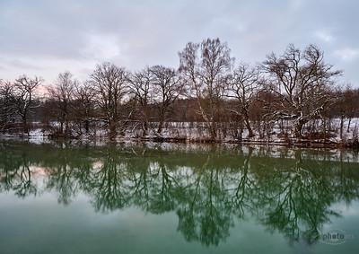 Winterhafte Bäume am Ufer des Wörthsees, Oberbayern, Bayern, Deutschland