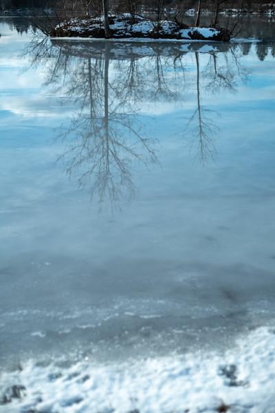 Spiegelung im See, Weitmannsee, Schwaben, Bayern, Deutschland