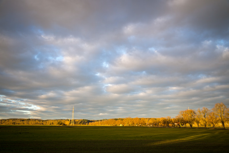 Warmes Morgenlicht trifft auf die Westlichen Wälder, Wellenburg, Göggingen, Augsburg, Schwaben, Bayern, Deutschland