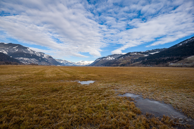 Feuchtwiesen im Süden des Zeller Sees, Österreich