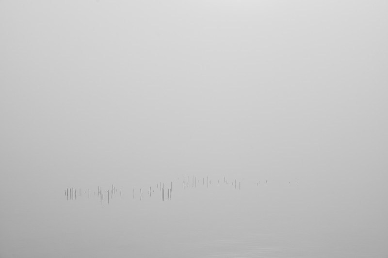 Ammersee bei Riederau mit Nebel, Riederau, Oberbayern, Bayern, Deutschland
