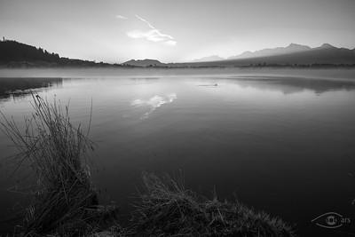 Sonnenaufgangsstimmung am Hopfensee, Hopfen am See, Oberbayern, Bayern, Deutschland