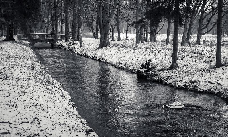 Siebenbrunner Bach, Stadtwald, Augsburg, Schwaben, Bayern, Deutschland