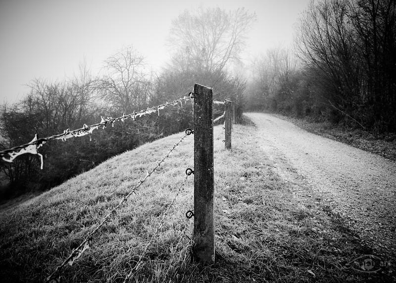Weg mit Zaun - frostig und im Nebel, Schäfstall, Donauries, Schwaben, Bayern, Deutschland