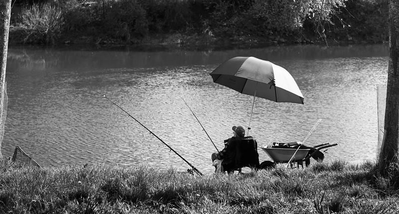 Angler an der Wörnitz, Donauwörth, Schwaben, Bayern, Deutschland