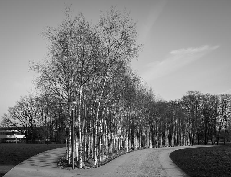 Landschaft und Architektur im Sheridon-Park, Augsburg, Schwaben, Bayern, Deutschland