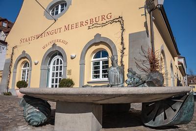 Staatsweingut Meersburg, Bodenseekreis, Tübingen, Baden-Württemberg, Deutschland