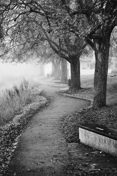 An der Donau entlang im Nebel, Neuburg an der Donau, Oberbayern, Bayern, Deutschland