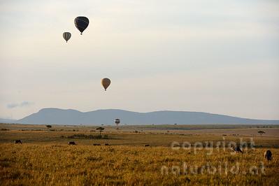 22-K40-74 - Heißluftballons über der Masai Mara