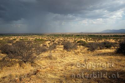 22-K40-08 - Regenschauer über dem Samburu Reservat