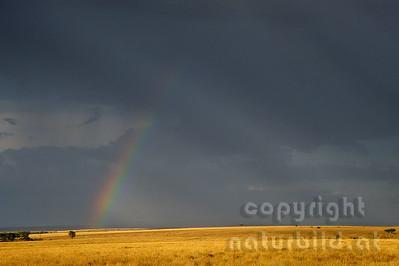 22-K40-81 - Regenbogen über der Mara