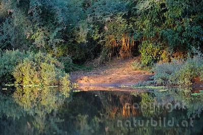 11-Z19-16 - Abendlicht am Wasser