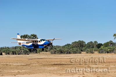 11-Z19-11- Buschflieger im Landeanflug