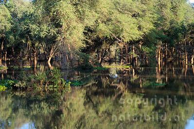 11-Z07-04 - Hochwasser am Sambesi