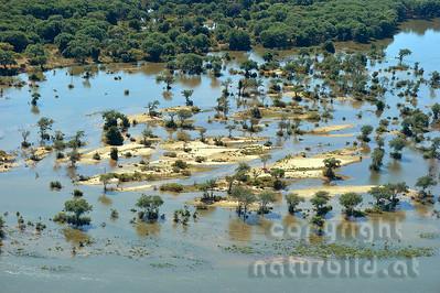 11-Z19-06 - Sambesi Hochwasser