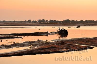 11-Z18-30- Morgenröte über dem Luangwa