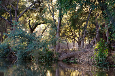 11-Z19-21 - Sambesi Ufer