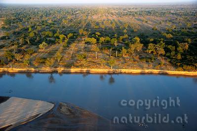 11-Z18-06 - Morgenlicht über dem Luangwa Tal