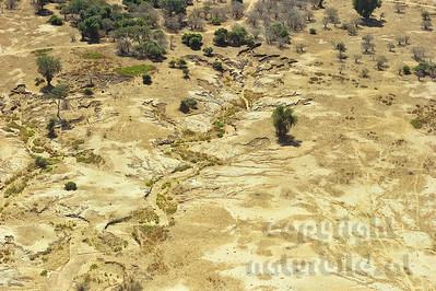 11-Z19-09 - Erosionen am Sambesi Ufer