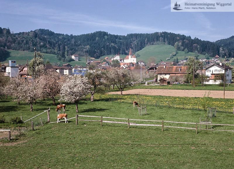 Schloss Altishofen