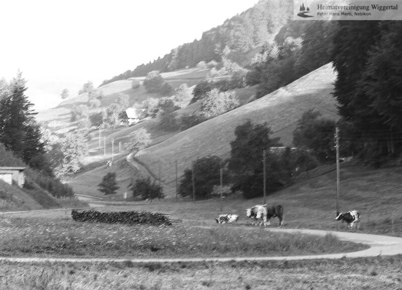 Nebikon/Egolzwil Landschaftsaufnahme 1986