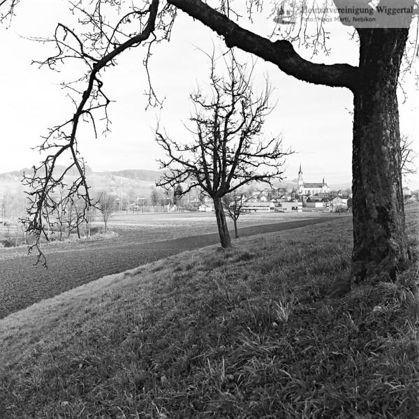 Landschaftsaufnahme (Grosswangen?) 1971