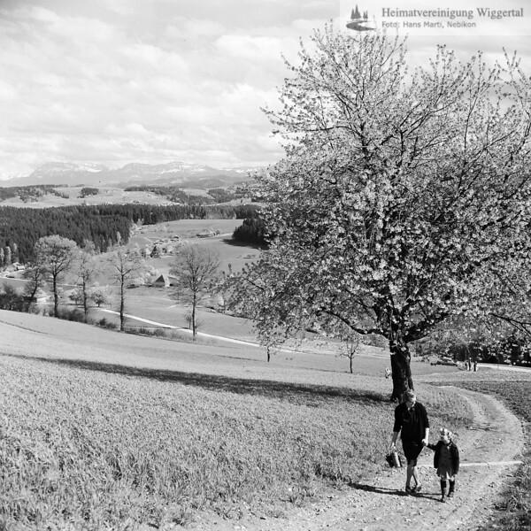 Landschaftsaufnahme mit zwei Spaziergänger