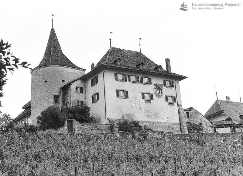 Burgenfahrt 1996