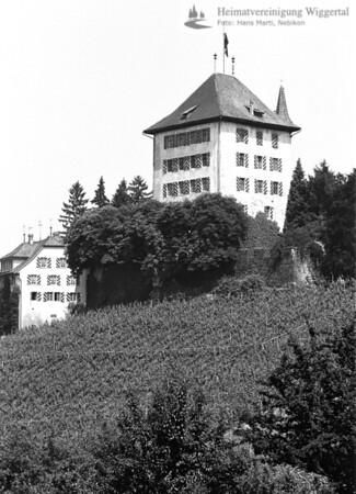 Burgenfahrt Heidegg 1986
