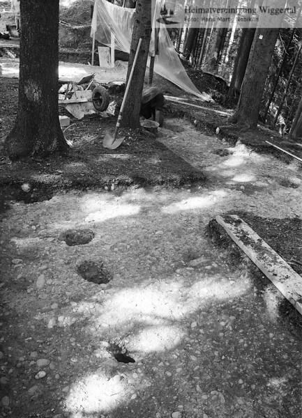 Wald 1982