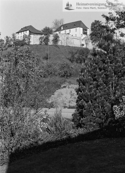Reiden 1989