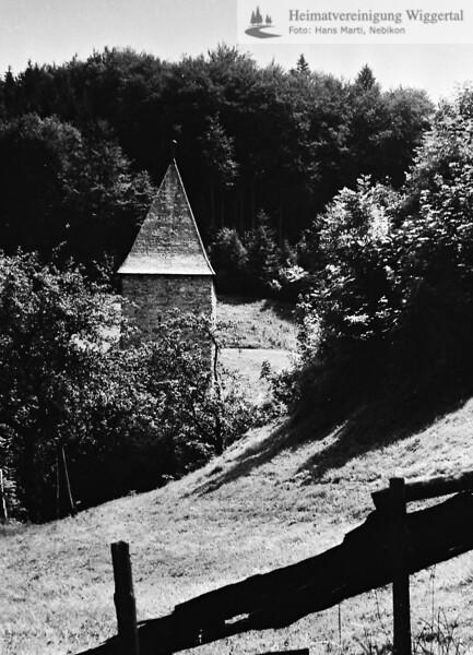 Schloss Wikon 1993