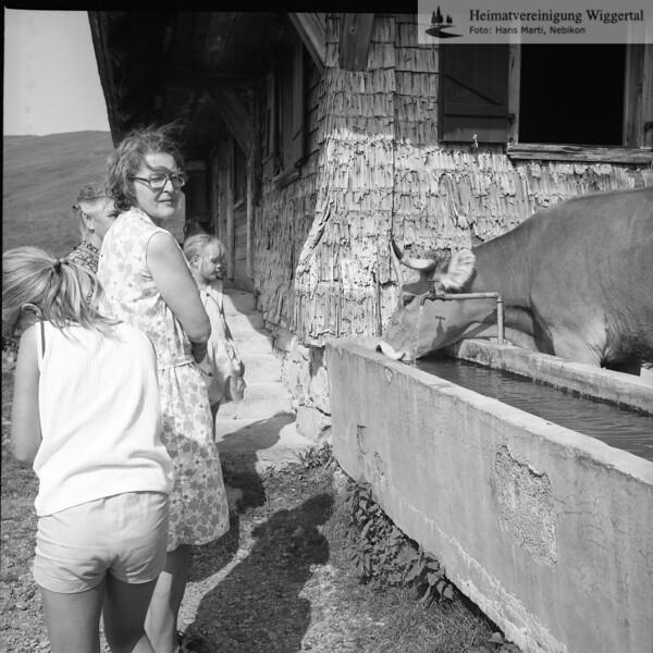 Betruf Vogel Escholzmatt Aug 1977