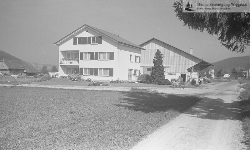 Hans Bisang Wydenmatt Herbst 1964