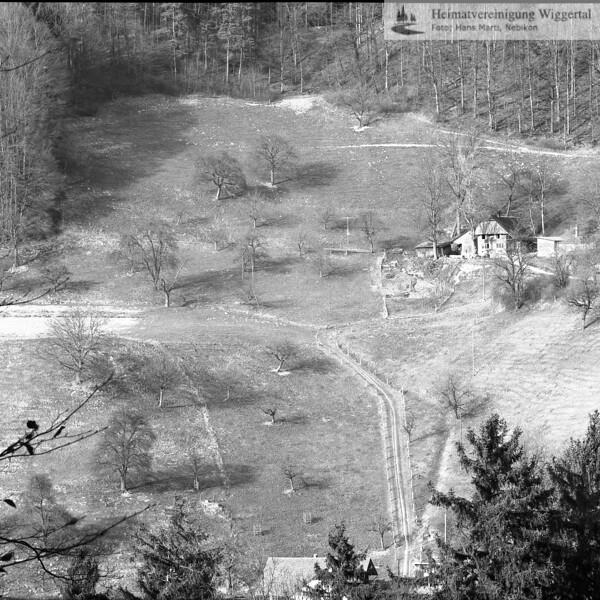 Frühjahr 1990