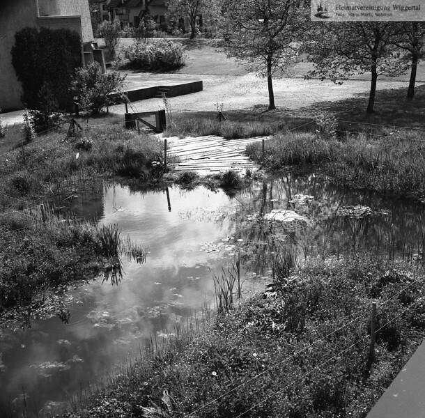#041612 | Biotop beim Oberstufenschulhaus; srs; fja