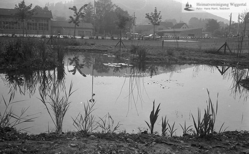 #041658 | Biotop; Nebikon: Biotop zwischen Oberstufenschulhaus und kath. Kirche. Im Hintergrund links Turnhalle, rechts Kohlenbunker der Firma Rekag; frwü