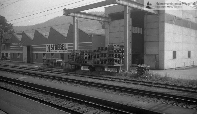 Strebel 1991
