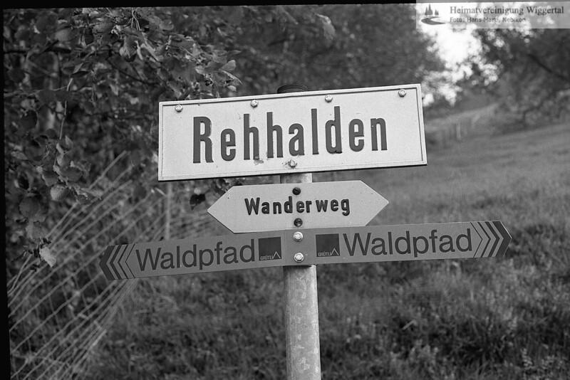 Waldpfad Herbst 1976