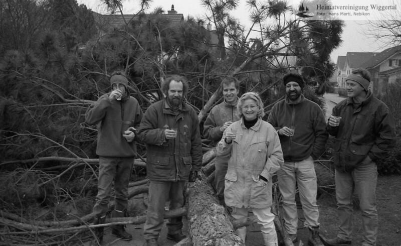 Baumfällung 1997