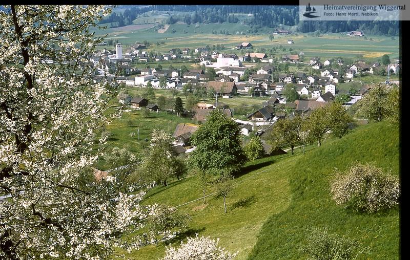 Nebikon Ort/ Nebikon Dorf