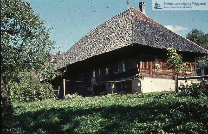 Bauernhöfe,Häuser,Spier,Fauna,Geschichte