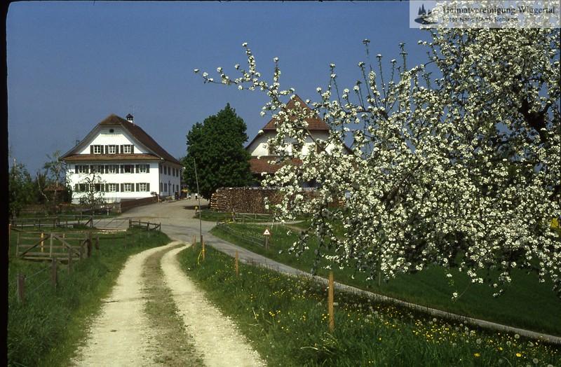 St.Urban(Burgen,Mauensee,Kastelen,Schlüssel)/Berghof Bauernhaus