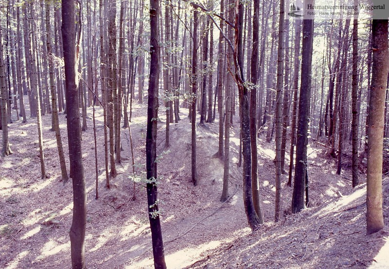 Landschaft 4
