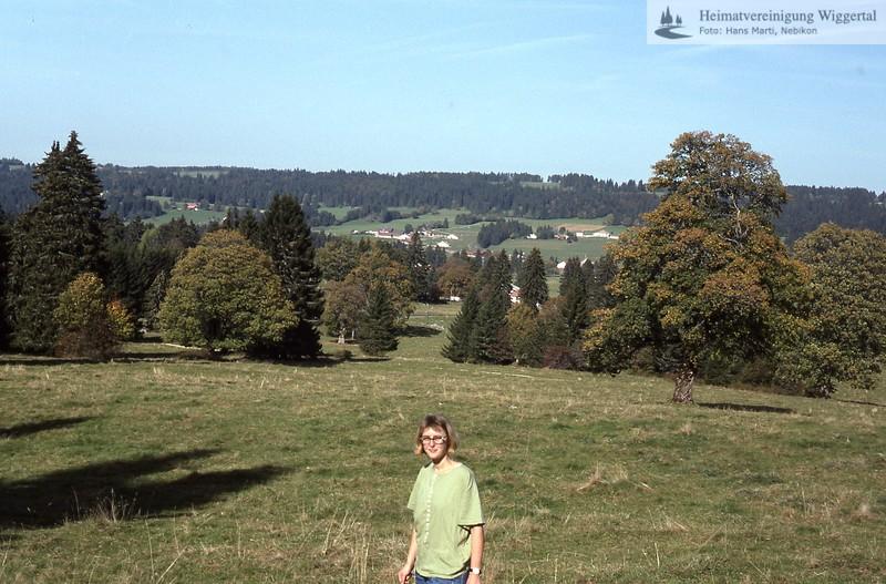 Landschaft 4 Jura?