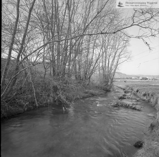 Flussverbauungen Rot Richtung Grosswangen Nähe Lehrgebiet