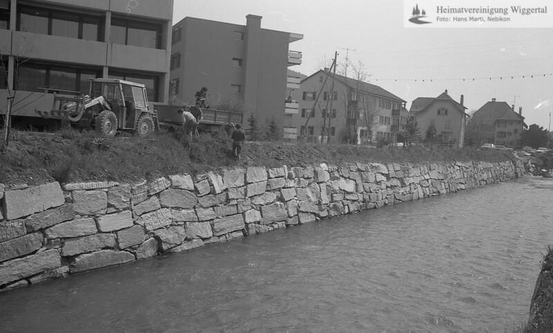 Flussverbauungen Wiggernuferbepflanzung Nebikon 1979